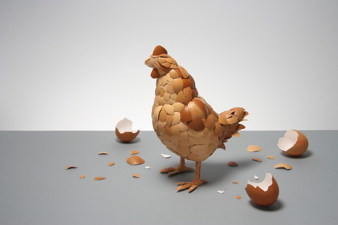 Chicken or The Egg