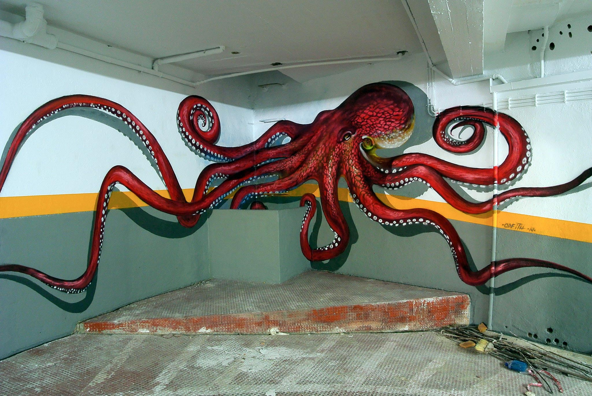 Octopus by Odeith