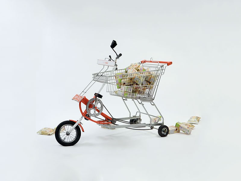 Jaebeom Jeong Shopping Cart Bicycle
