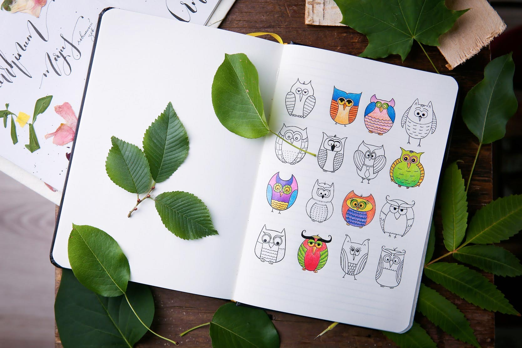 Colouring Notebook